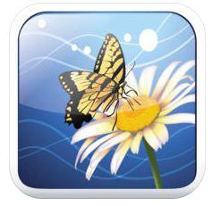 Schütze Deine privaten Fotos auf iPhone und iPod touch vor den Blicken anderer – die App dafür ist gerade gratis
