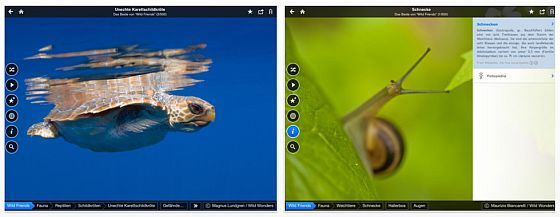 Fotopedia Wild Friends Universal-App fr iPhone und iPad - Screenshots