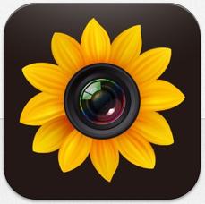 Hast Du viele Bilder auf Deinem Gerät? Diese App hilft Dir bei Deinem Portfolio – heute gratis