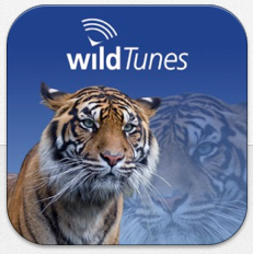 wildTunes Icon