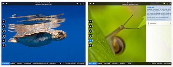 Fotopedia Wild Friends Universal-App für iPhone und iPad - Screenshots