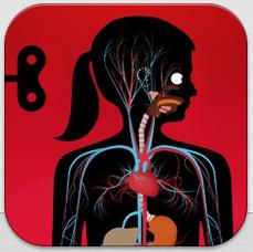Der_menschliche_Körper_Icon
