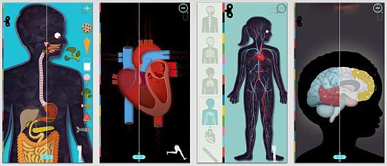 Der menschliche Körper Screenshots